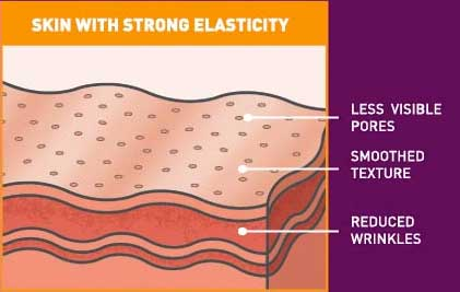 Skin with strong elasticity