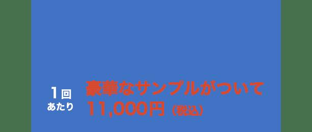 5回コース 1回あたり約14,800円(税込)相当 → 1回あたり豪華なサンプルがついて11,000円(税込)